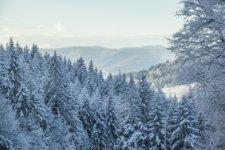 Zima w górach - atrakcje w Krynicy